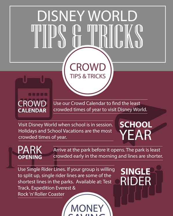 Disney Travel Magic Guides