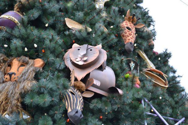 Christmas at Animal Kingdom