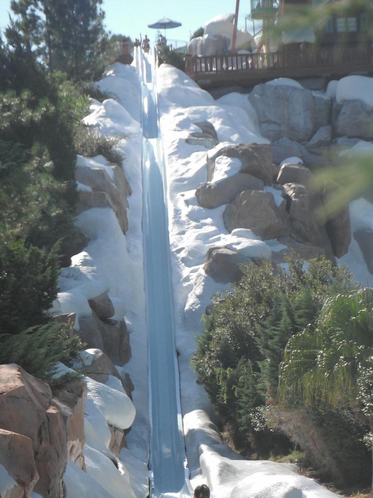 best water park at disney world