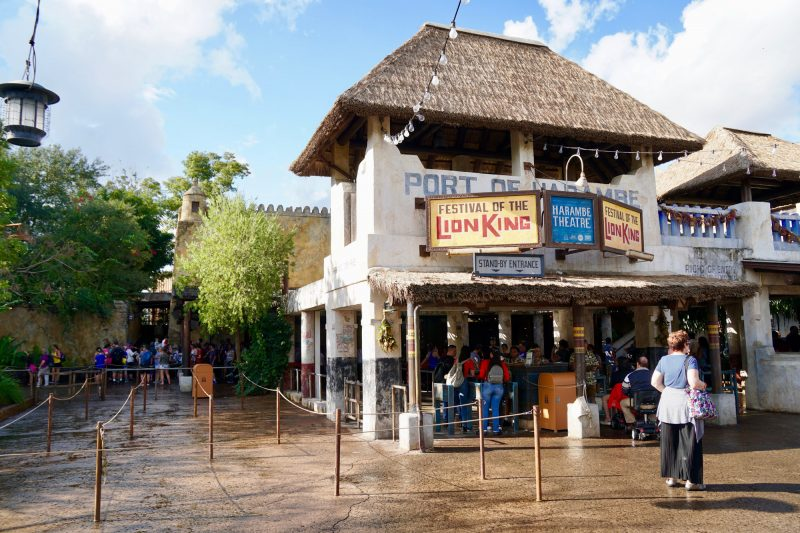 animal kingdom vegetarian food