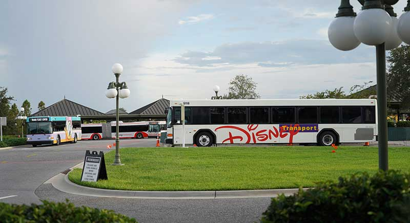 Disney Transportation Buses