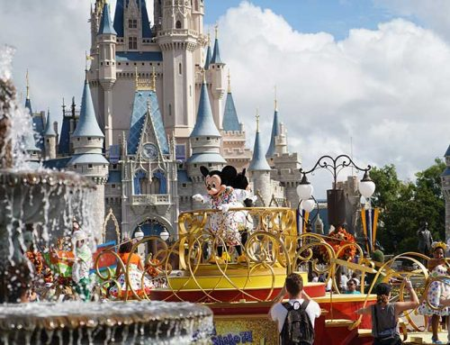 Which Disney Park is Best?