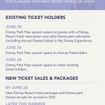 What is the Disney Park Pass System?