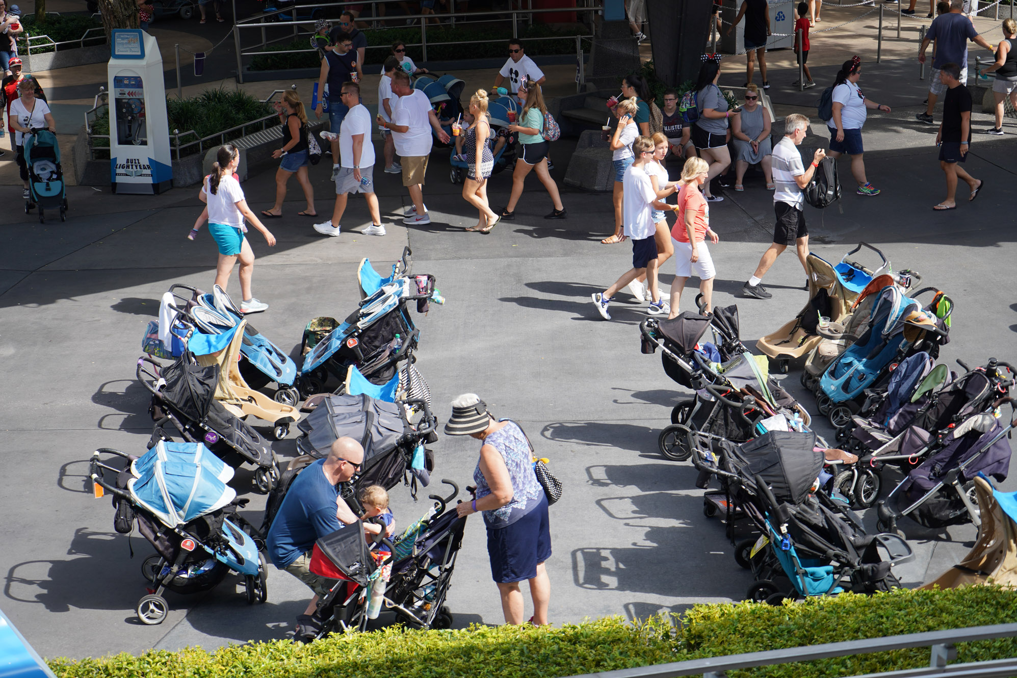 a group of strollers at disney world