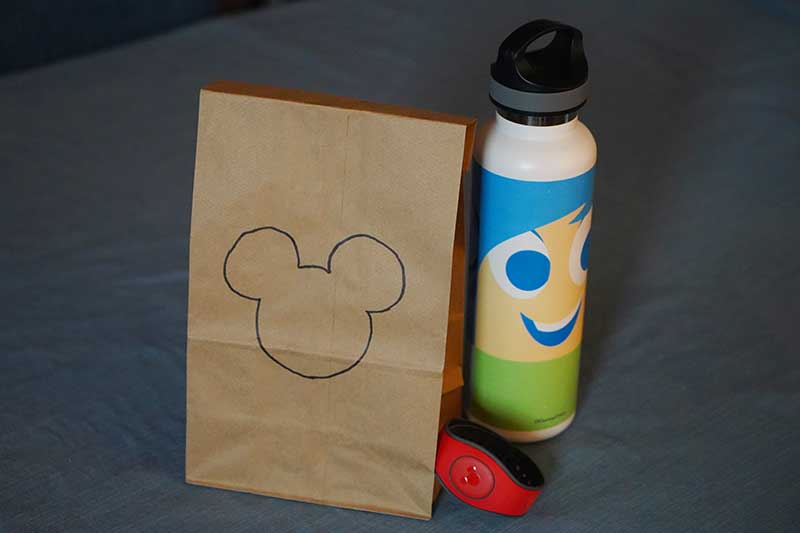 Can you Bring Food into Disney World? [Lunch, Snacks ...