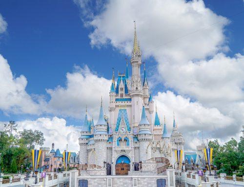 MagicMobile App at Disney World
